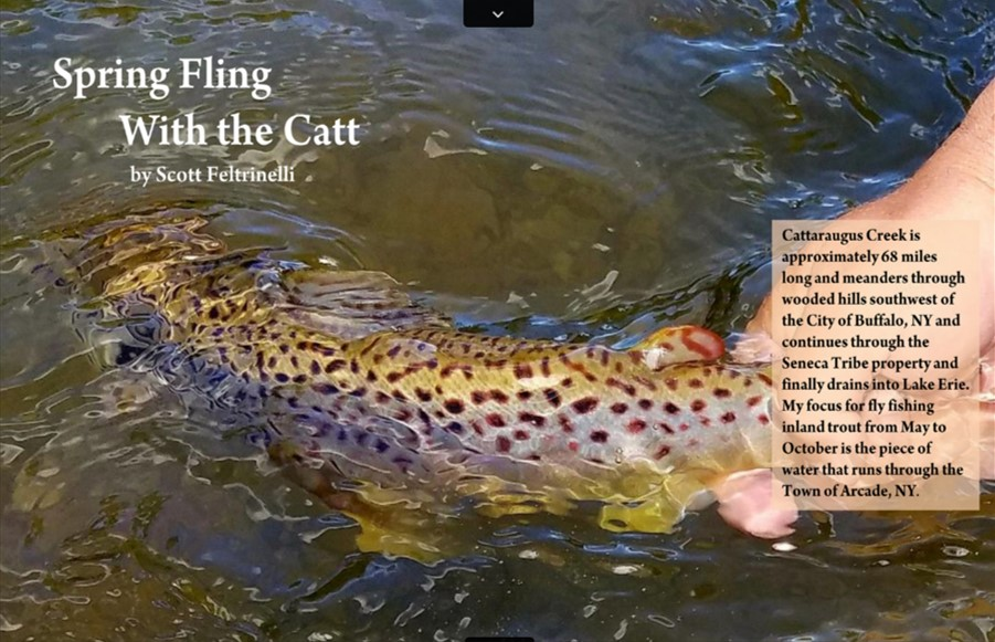 best fishing location, on the fly magazine